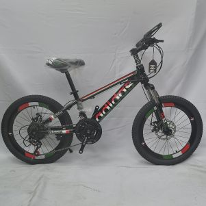 "BICYCLES 20"" NEW"