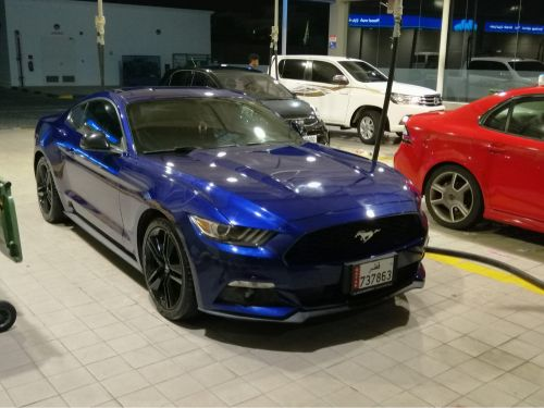 Mustang ecoboost 2016