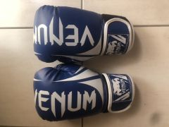 Venom boxing gloves