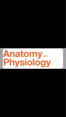 Teaching physiology and anatomy