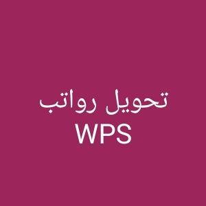 Accountant for transfer salaries in WPS