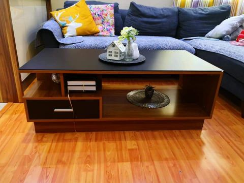 Sofa bed & coffe table