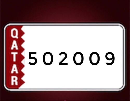 502009 number plate for sale