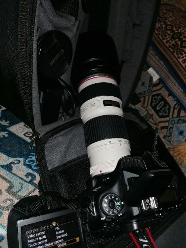 Canon 70D with 200-70 lens