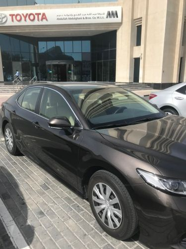 Camry LE 2019
