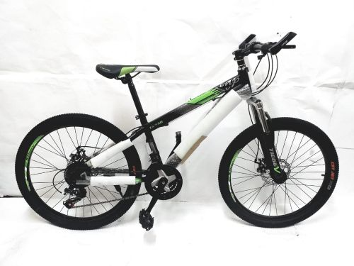Bicycle 24 New
