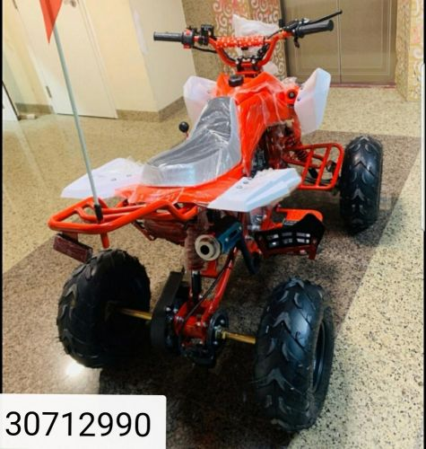 4wheel bod buta 110ccc big