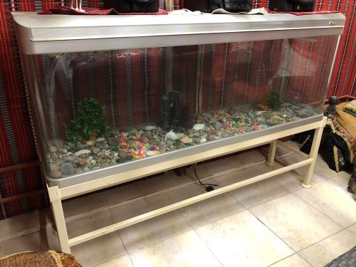 Glass aquarium tank for sale