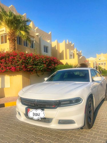 Dodge charger (perfect condition)