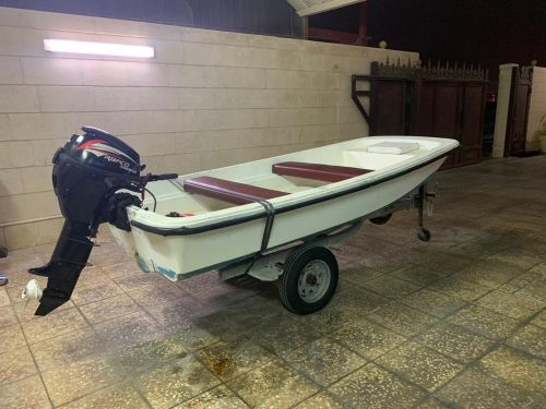 11ft boat with Rafco 8HP engine