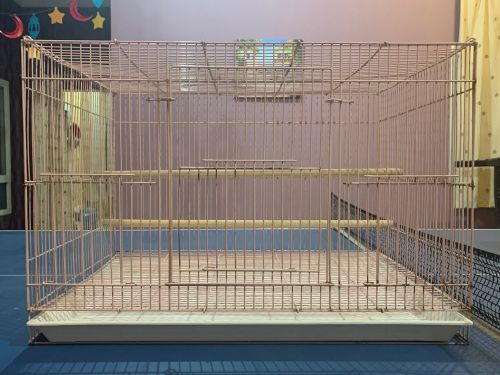 large birds cage