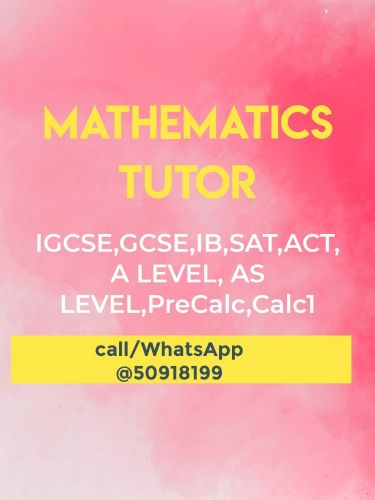 Maths tutor( Modaris Ansari)