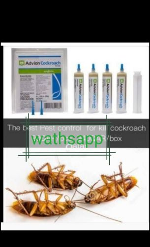 Kill cockroach insect Pests